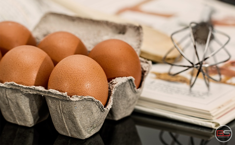 Fact-file of Egg Nutrition