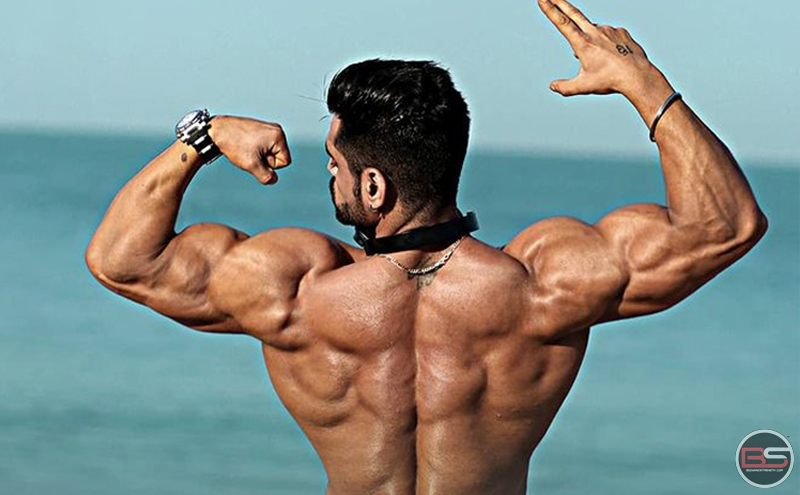 6-Day Ultimate Mass Gain Routine - Day 2 - Back